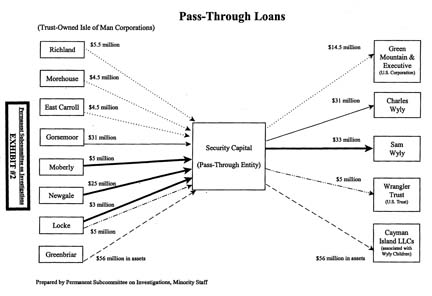 Senate Report: The Wyly Pass-Through Loans